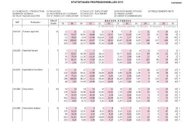 actu-statistiques-professionnelles-cedage-2015.png