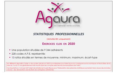 recueil_statistique_BIC_2020_360x254.png