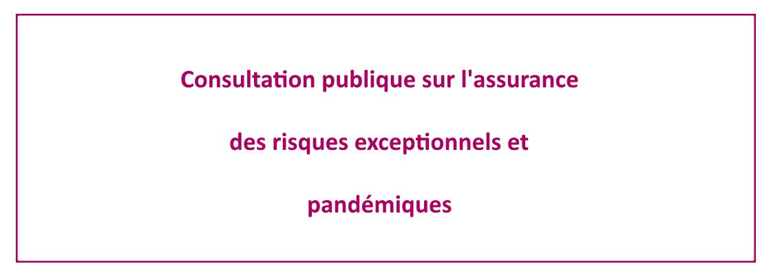slide-consultation-publique-assurance.png